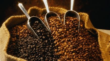 Самые дорогие сорта кофе: изысканность вкуса и неповторимость аромата