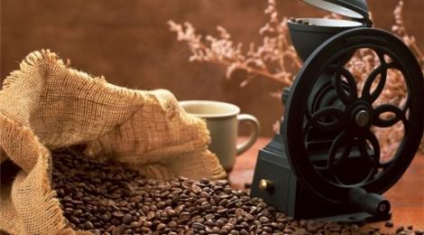 Какой кофе в зернах лучше: выбор качества и вкуса